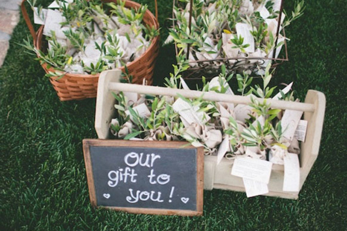 Wedding Gift Ideas Low Budget : DIY Wedding Plant Favors are Perfect for a Green Wedding