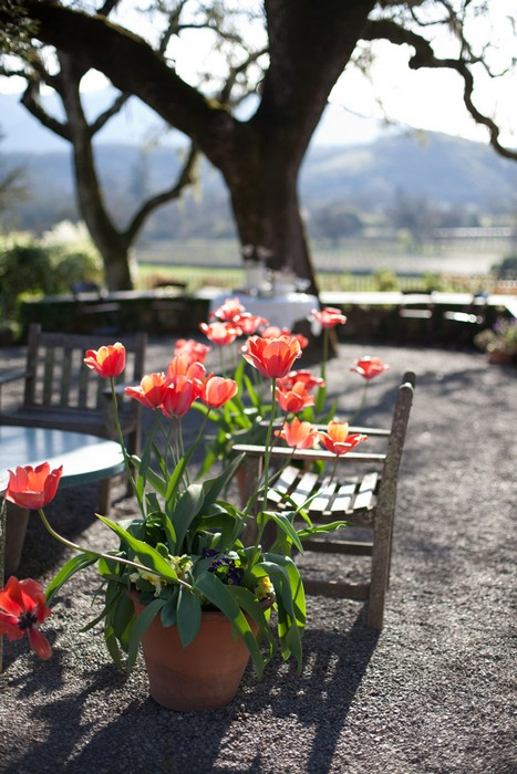 sonoma-california-ranch-wedding-julie-and-luciano-megan-clouse-photography-031_low