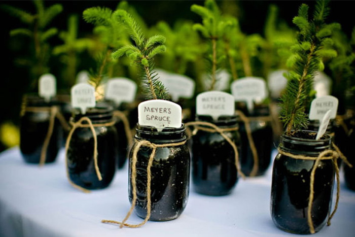 ... Behind Wedding Favors - The Wedding SpecialistsThe Wedding Specialists
