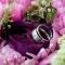 flowers-rings thumbnail