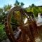 water-wheel-nottawasaga-inn thumbnail