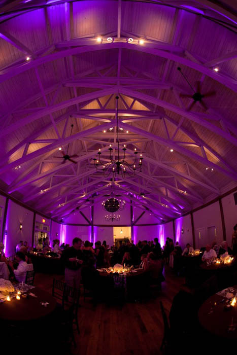 wedding lighting rental 3 rent led par can