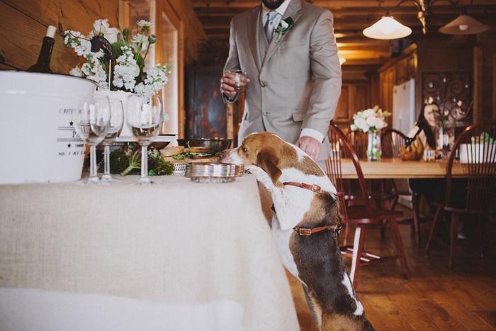 north-carolina-cabin-wedding-kristofer-and-krista-6565