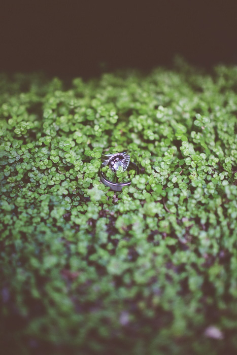 wedding rings on ground cover
