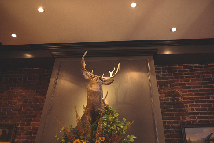 mounted stag head at Wayfare Tavern