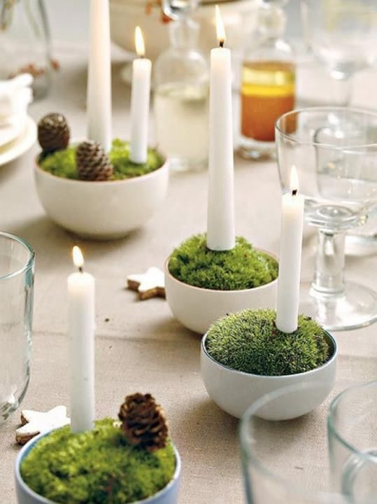 moss christmas ideas