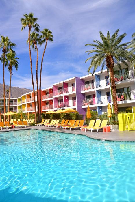 Intimate Weddings at Saguaro Palm Springs - The Saguaro Pool