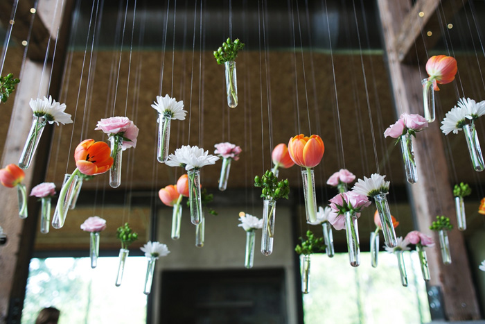 hanging tulips in test tubes