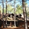 retreat-in-the-pines-mineola-tx-intimate-wedding thumbnail