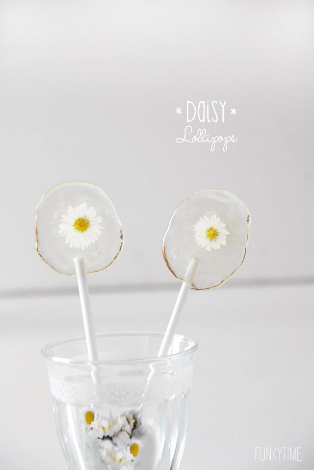 daisly lollipops