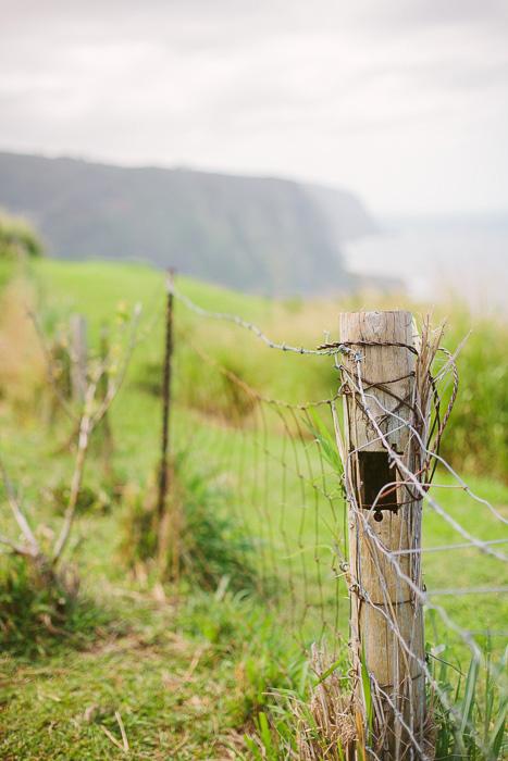 fence in Hawaii
