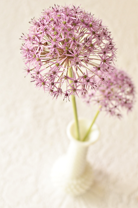 allium centerpiece