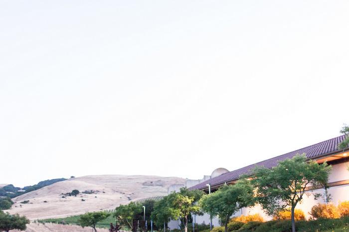 sonoma vineyard