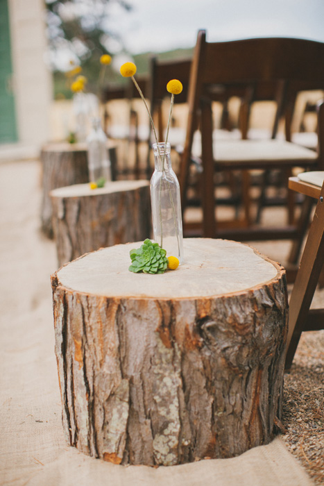 tree stump lined wedding aisle