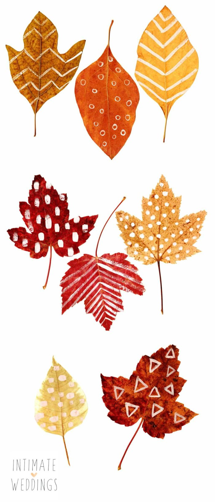 This is an image of Punchy Fall Leaf Printable