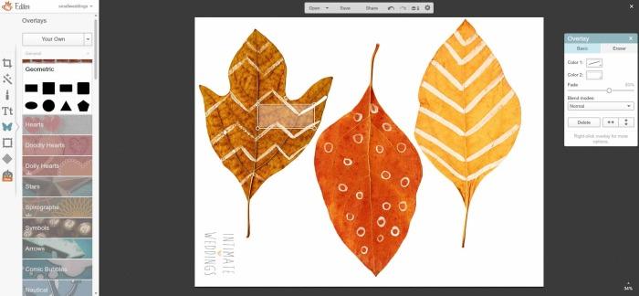 leaves picmonkey