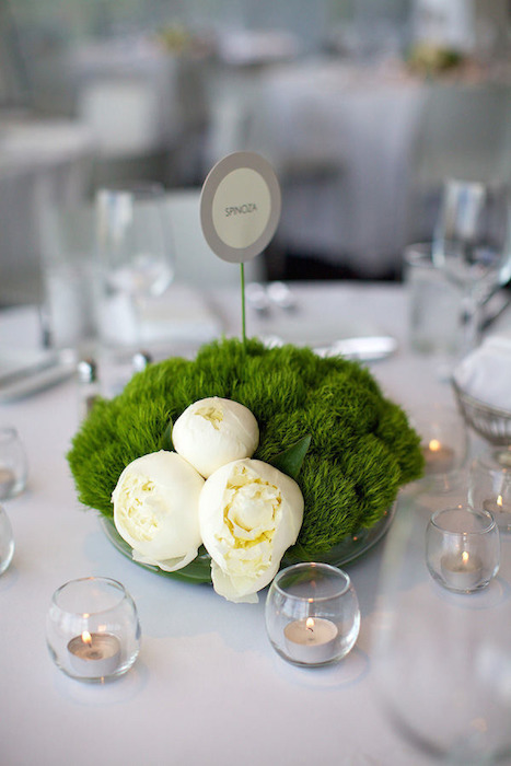 Minimalist wedding ideas for Contemporary table centerpieces
