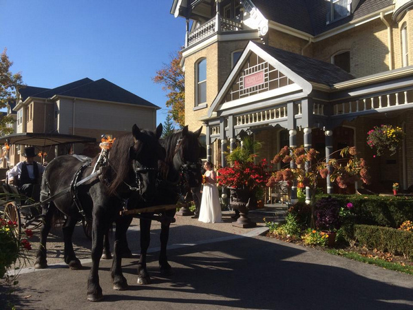 Horse and carriage at the Idlewyld Inn - London Ontario