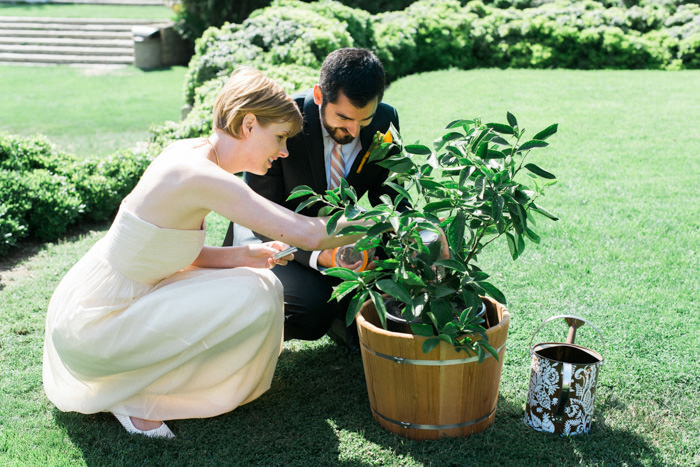 bride and groom planting tree