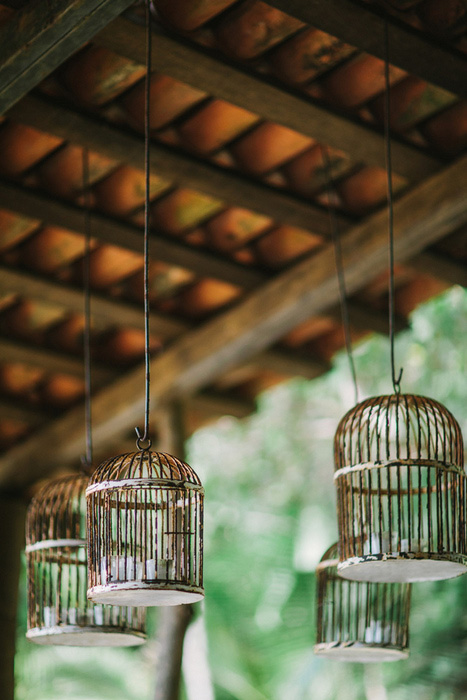 hanging bird cages