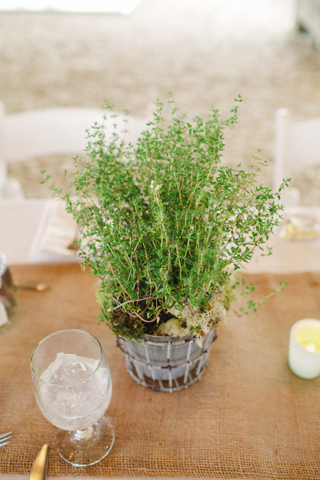wedding plant centerpiece