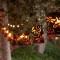 old-monterey-inn-garden-lights thumbnail