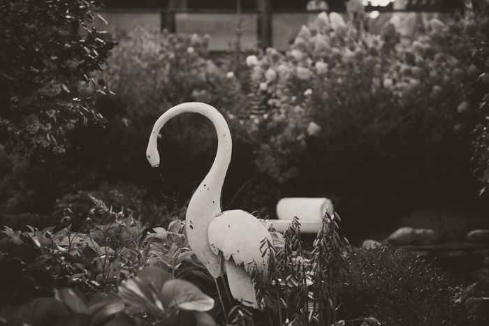 garden swan ornament