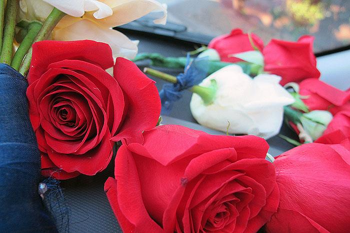 red rose flower crown