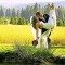 Mountain-Springs-Lodge-Plain-WA-bride-and-groom thumbnail