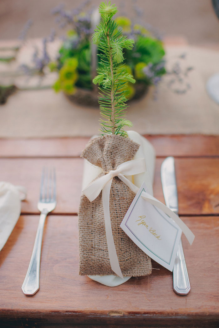 sapling wedding favor and placecard