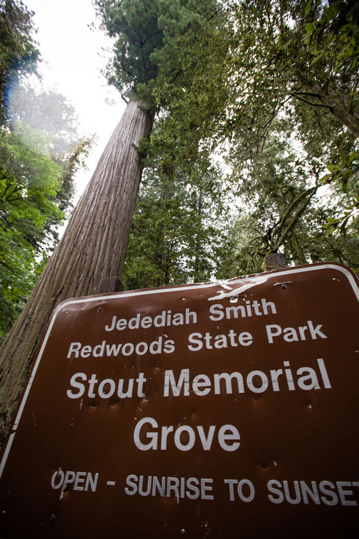 Redwoods State Park sign
