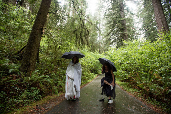bride and maid of honour in the woods with umbrellas