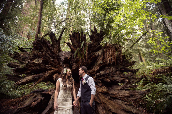 bride and groom in front of massive fallen tree