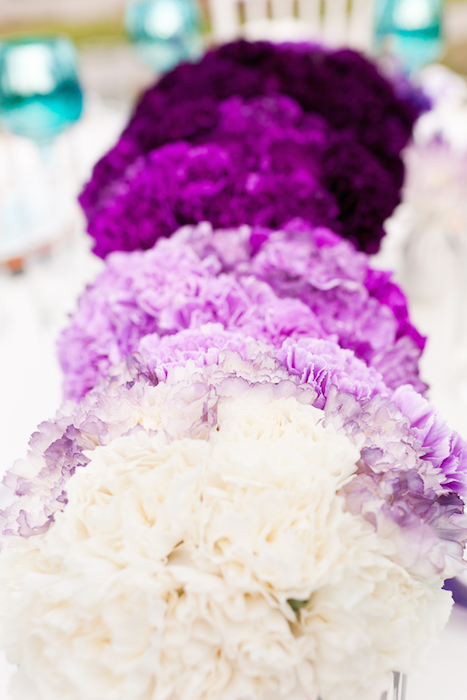 purple-ombre-flowers