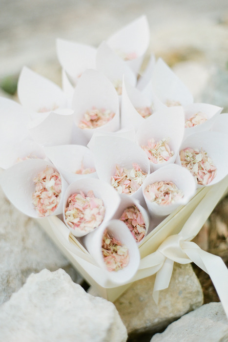 rose-petal-confetti