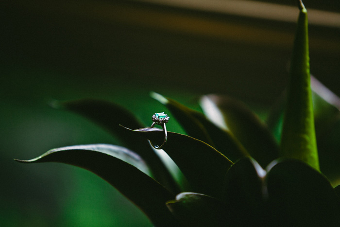 ring on plant