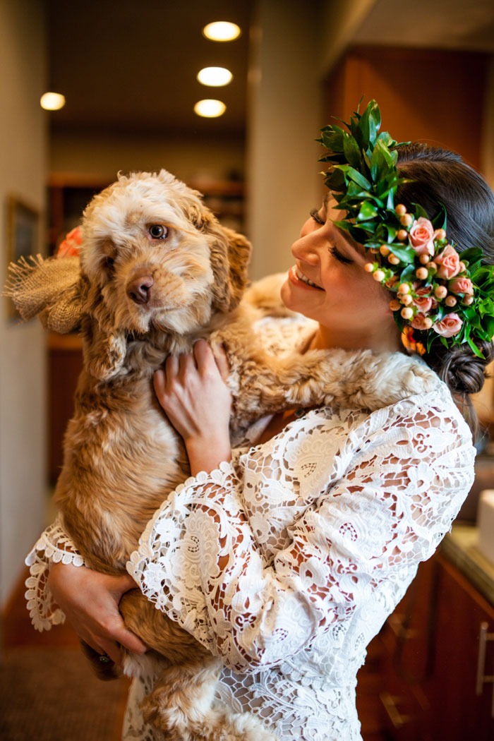 bride holding cocker spaniel