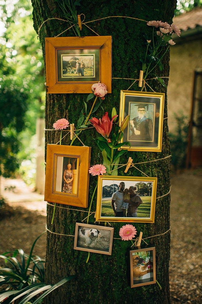 photos on tree
