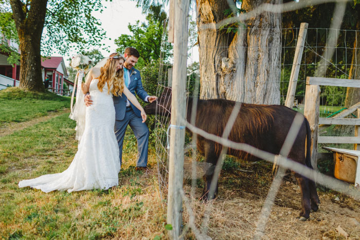 bride and groom feeding farm animals