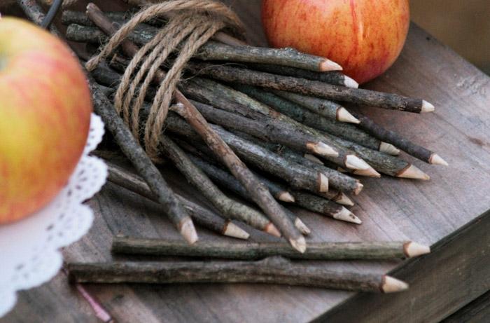 Caramel-Apple-Twigs