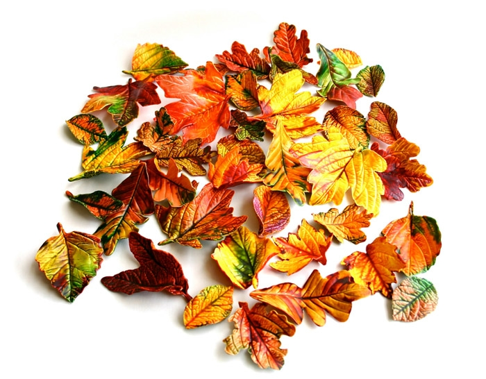 Edible-Fall-Leaves