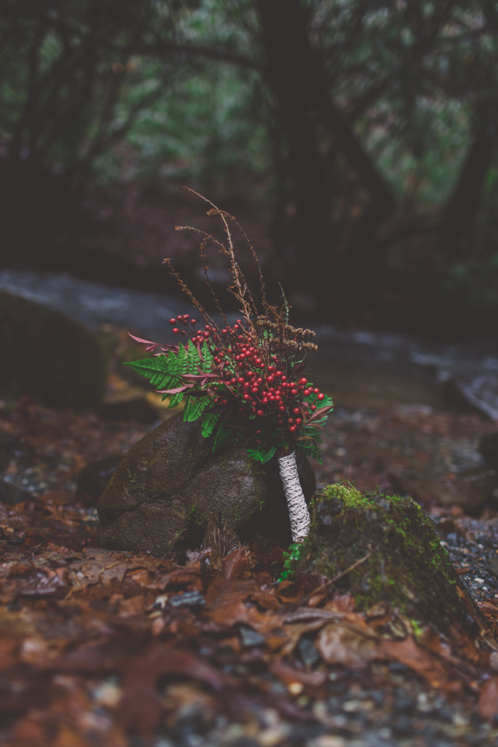 Smoky-Mountain-Elopement-Jessica-Tyler-06