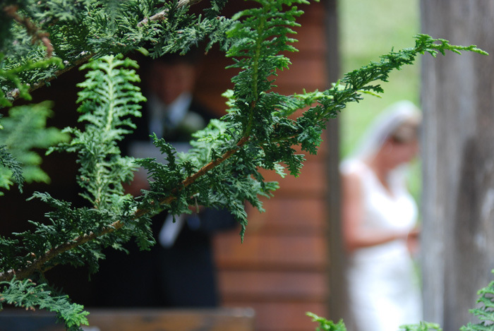Tennessee-Intimate-Weddings-at-Butterfly-Hollow-6