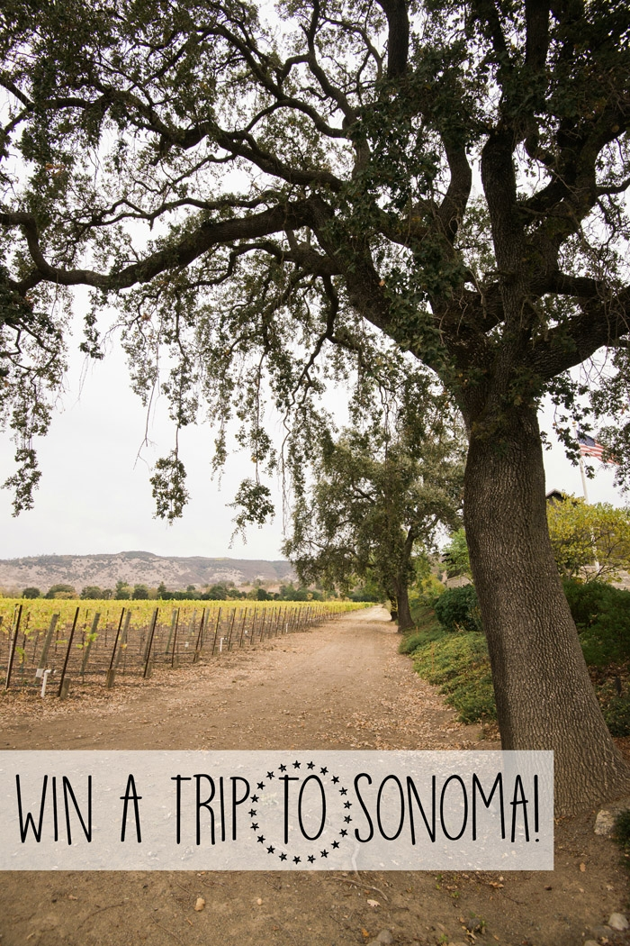 sonoma sweepstakes win