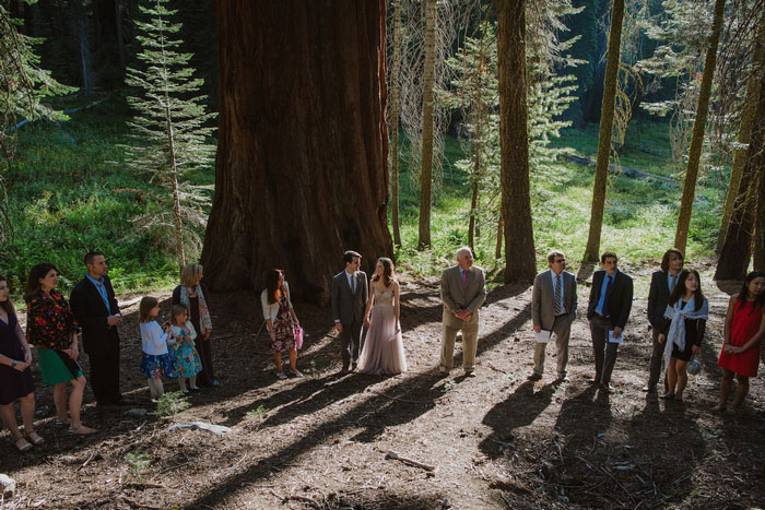 wedding ceremony in Sequoia National Park