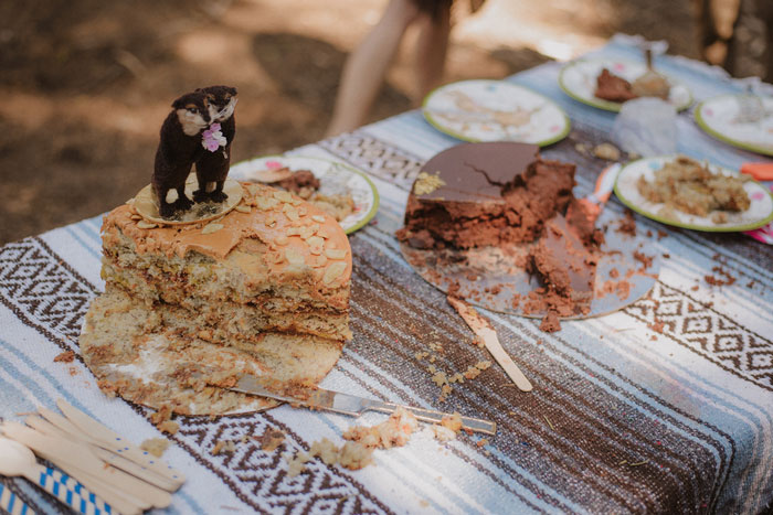 cut wedding cakes on picnic table