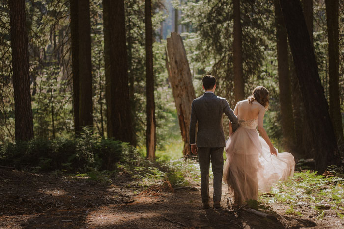 Julia And Jeffrey S Magical Sequoia National Park Wedding