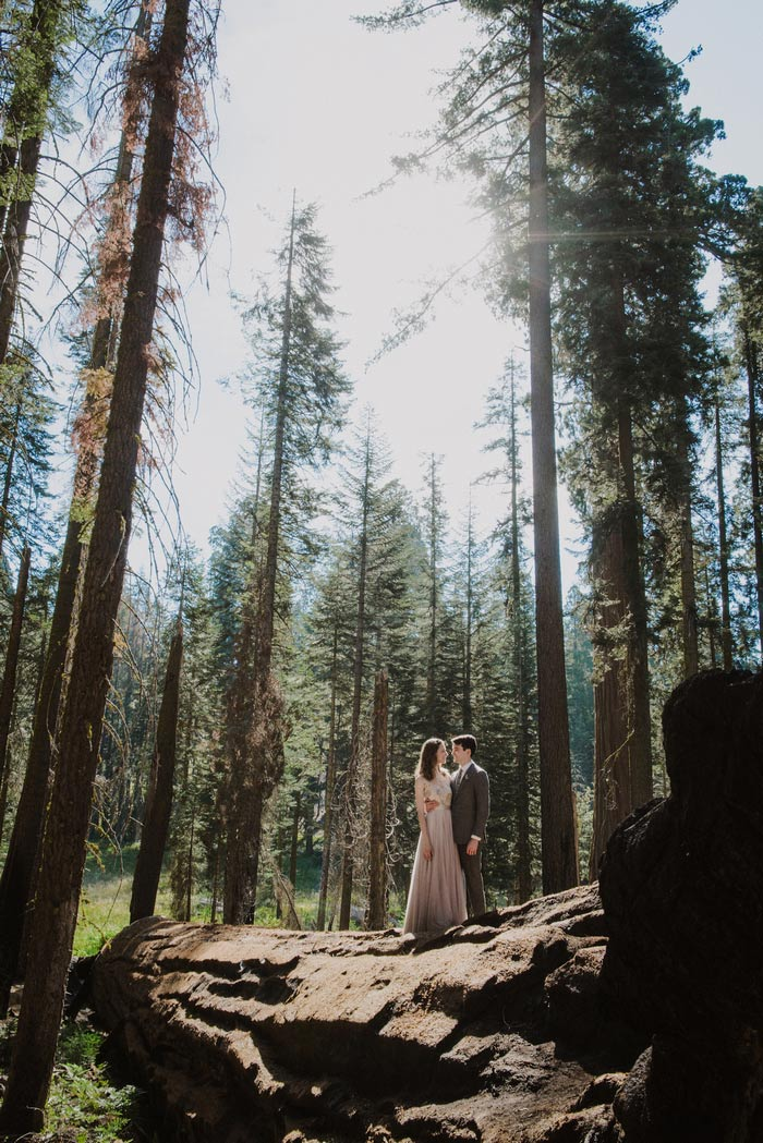 wedding portrait in Sequoia National Park