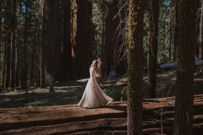 bride and groom portrait in Sequoia National Park