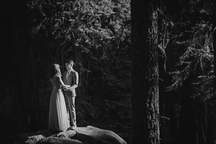 wedding portrait in Sequoia National Park